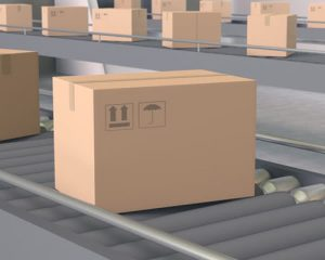 CONVEYOR BELTS FOR CARTON